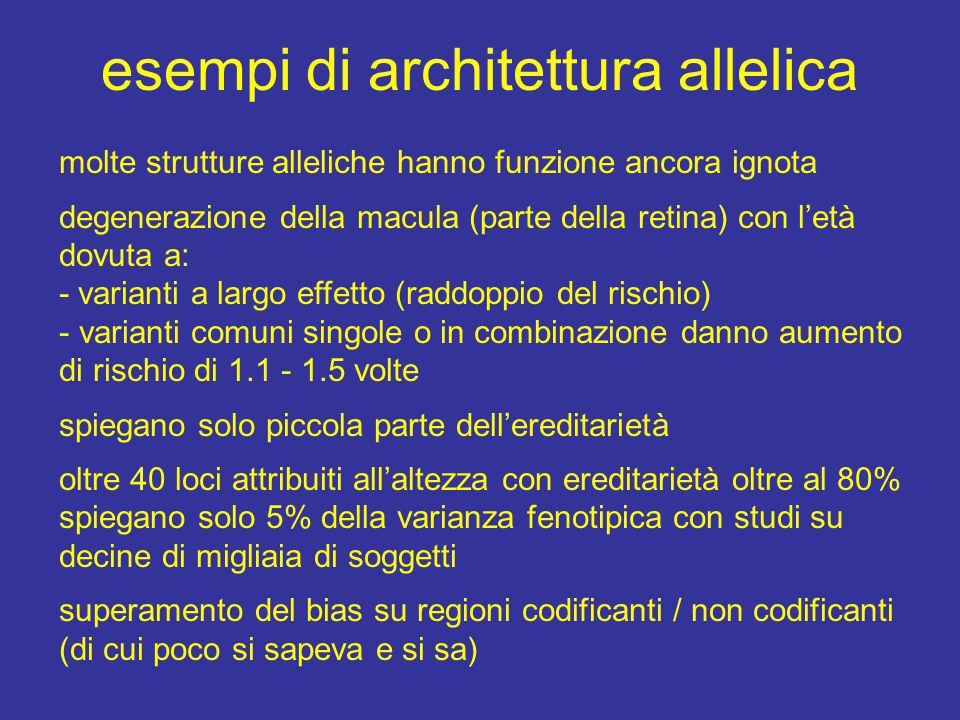 esempi di architettura allelica molte strutture alleliche hanno funzione ancora ignota degenerazione della macula (parte della retina) con l'età dovut