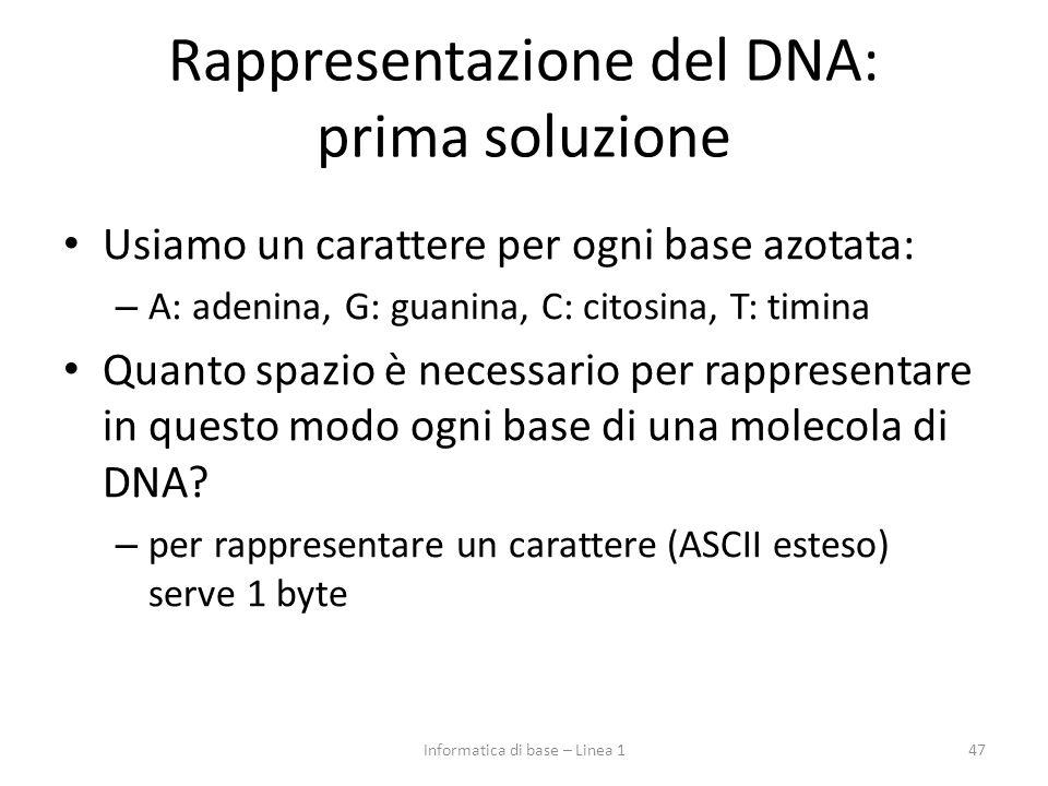 Rappresentazione del DNA: prima soluzione Usiamo un carattere per ogni base azotata: – A: adenina, G: guanina, C: citosina, T: timina Quanto spazio è