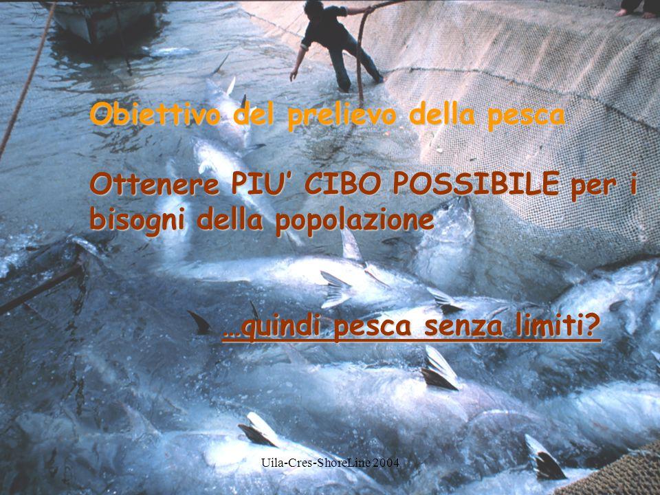 Obiettivo del prelievo della pesca Ottenere PIU' CIBO POSSIBILE per i bisogni della popolazione …quindi pesca senza limiti?