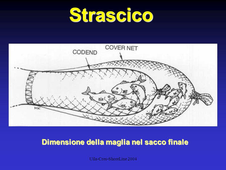 Uila-Cres-ShoreLine 2004Strascico Dimensione della maglia nel sacco finale