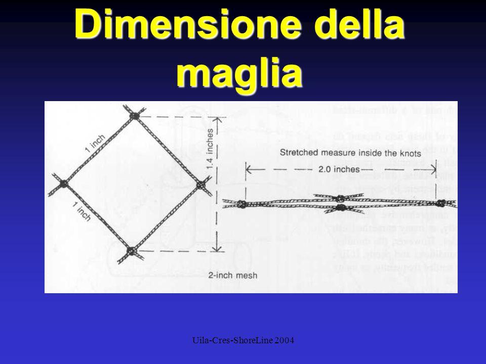 Uila-Cres-ShoreLine 2004 Dimensione della maglia