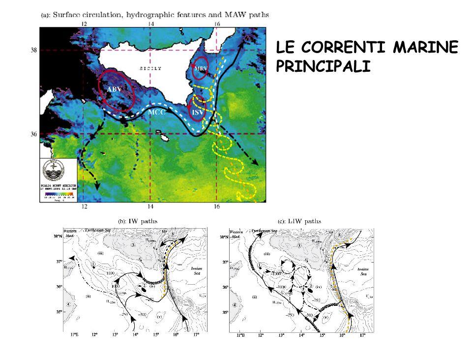 Uila-Cres-ShoreLine 2004 Il libero accesso alle risorse non è più possibile!!.
