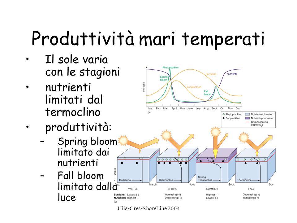 Produttività mari temperati Il sole varia con le stagioni nutrienti limitati dal termoclino produttività: –Spring bloom limitato dai nutrienti –Fall bloom limitato dalla luce