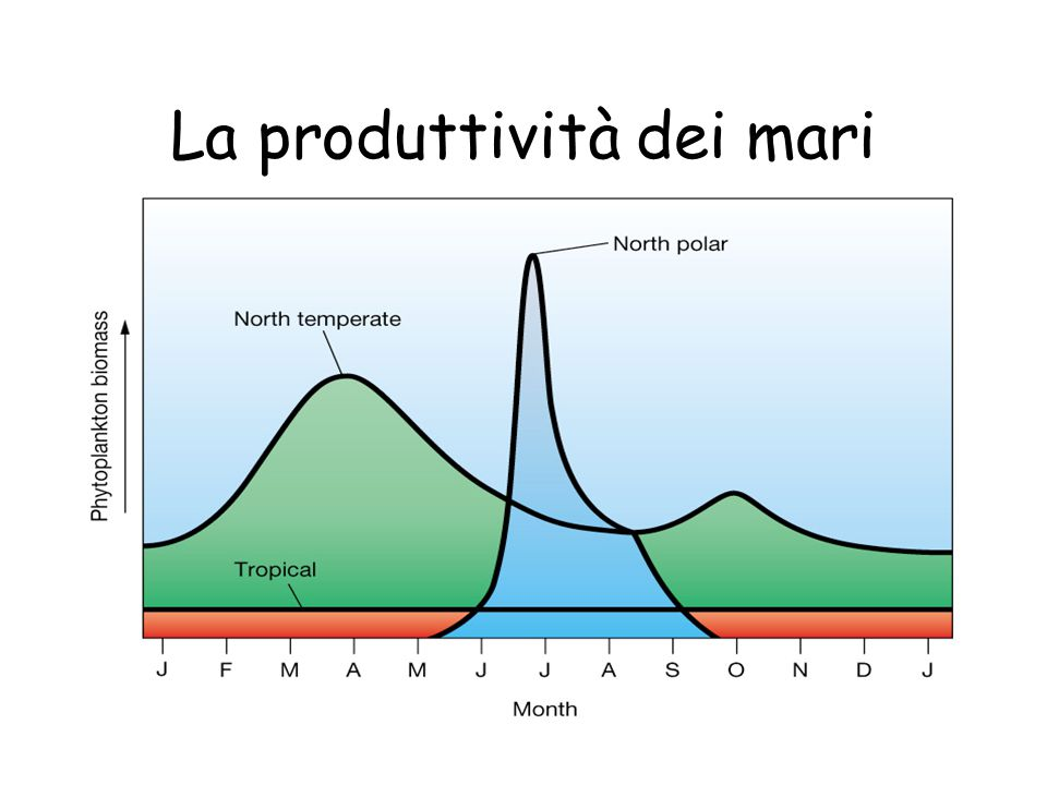 Uila-Cres-ShoreLine 2004 La produttività dei mari