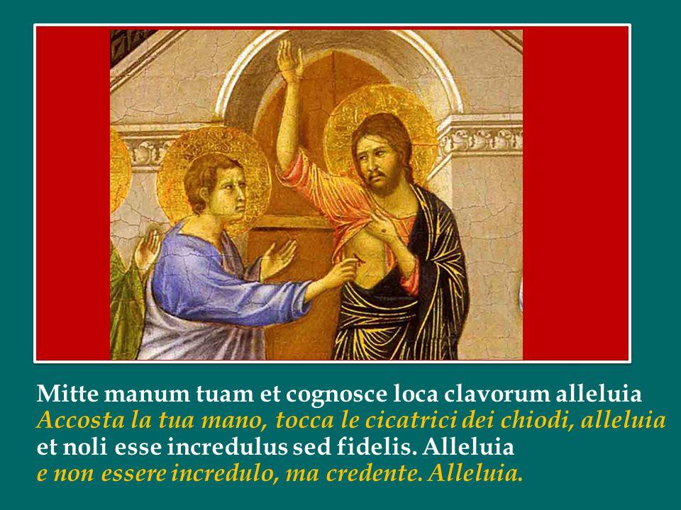 Papa Francesco ha introdotto la preghiera mariana del Regina Caeli dal Palazzo Apostolico di Piazza San Pietro nella seconda domenica di Pasqua /c 7 a