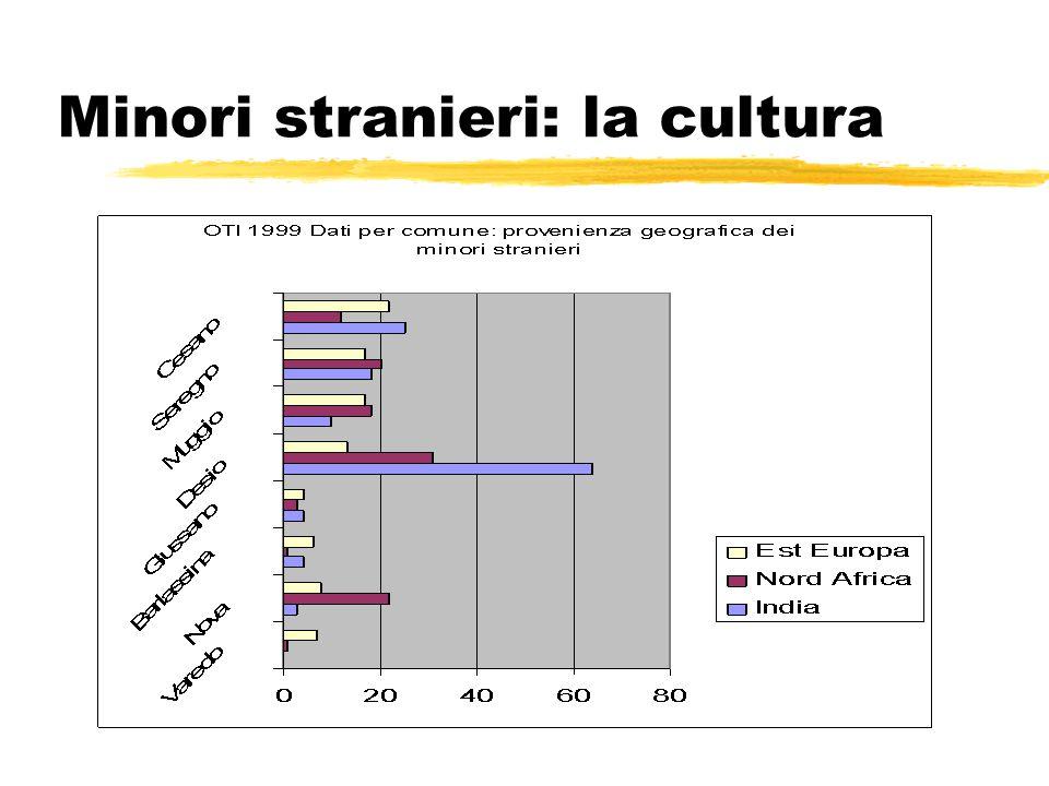 Minori stranieri: la cultura