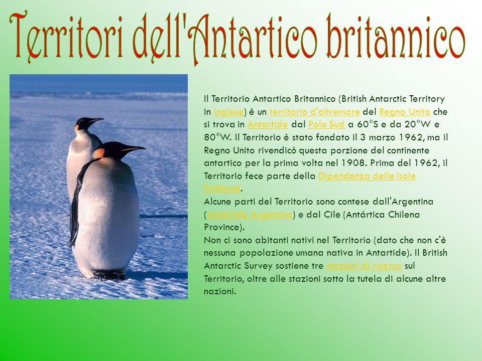Il Territorio Antartico Britannico (British Antarctic Territory in inglese) è un territorio d'oltremare del Regno Unito che si trova in Antartide dal