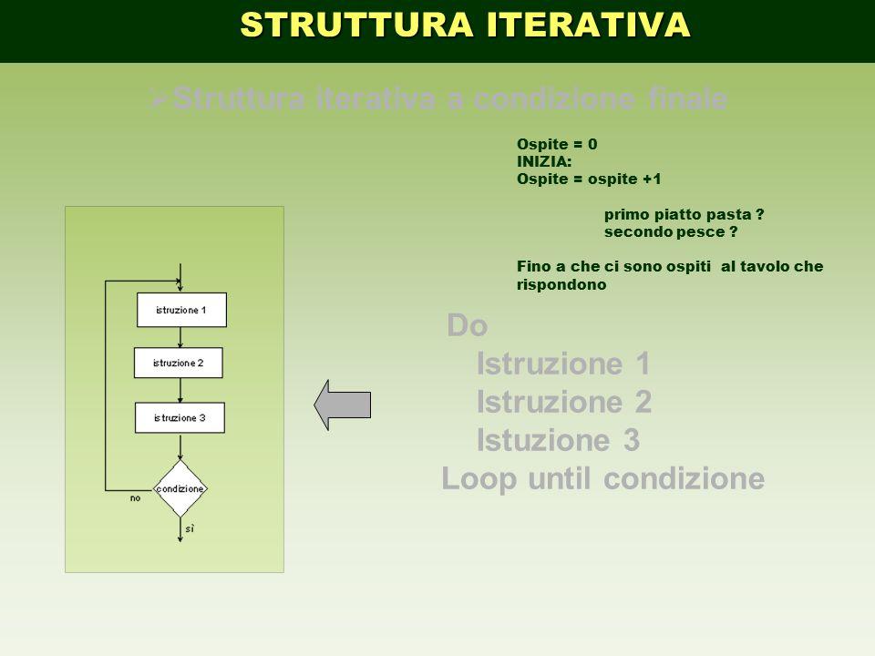 Do Istruzione 1 Istruzione 2 Istuzione 3 Loop until condizione  Struttura iterativa a condizione finale STRUTTURA ITERATIVA STRUTTURA ITERATIVA Ospit