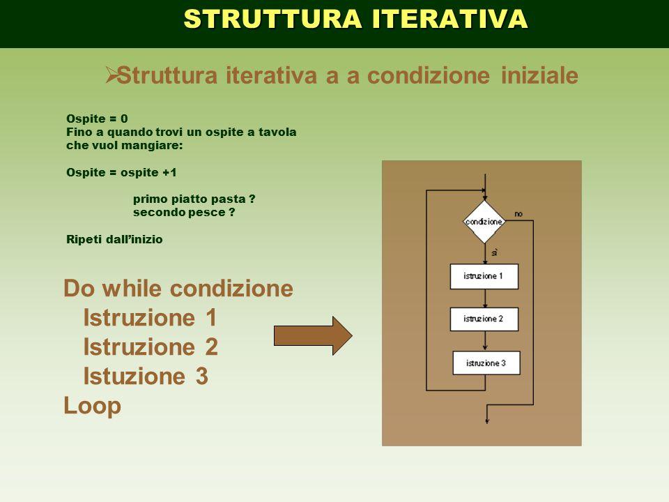  Struttura iterativa a a condizione iniziale Do while condizione Istruzione 1 Istruzione 2 Istuzione 3 Loop STRUTTURA ITERATIVA STRUTTURA ITERATIVA O