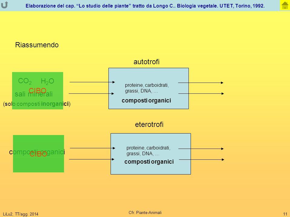 """LiLu2, TT/agg. 2014 Cfr. Piante-Animali 11 Elaborazione del cap. """"Lo studio delle piante"""" tratto da Longo C.. Biologia vegetale. UTET, Torino, 1992. R"""