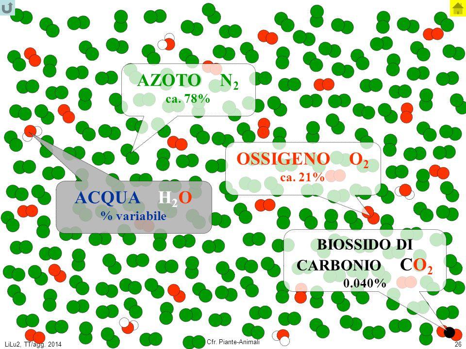 LiLu2, TT/agg. 2014 Cfr. Piante-Animali 26 AZOTO N 2 ca. 78% OSSIGENO O 2 ca. 21% ACQUA H 2 O % variabile BIOSSIDO DI CARBONIO CO 2 0.040%