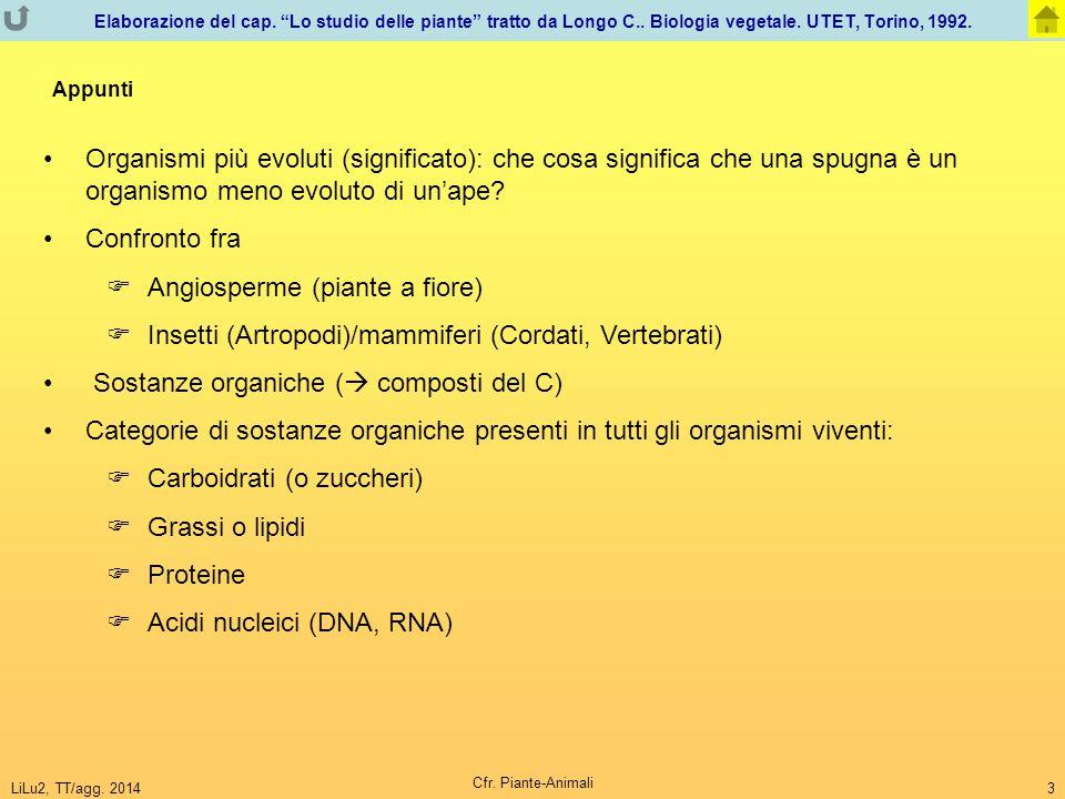 LiLu2, TT/agg. 2014 Cfr. Piante-Animali 3 Organismi più evoluti (significato): che cosa significa che una spugna è un organismo meno evoluto di un'ape