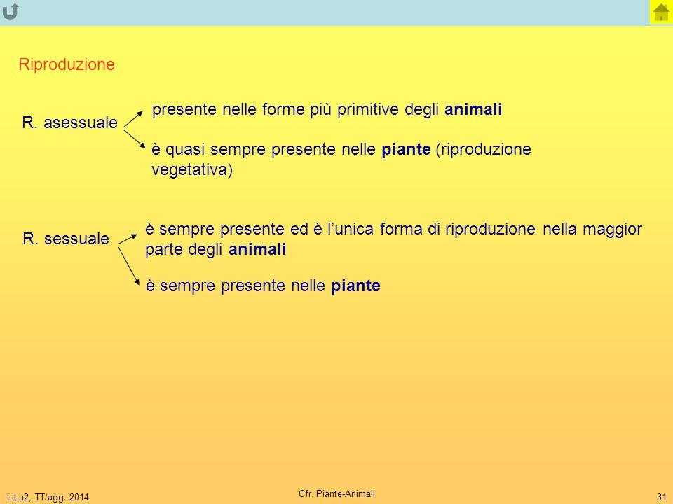 LiLu2, TT/agg. 2014 Cfr. Piante-Animali 31 Riproduzione R. asessuale R. sessuale presente nelle forme più primitive degli animali è quasi sempre prese
