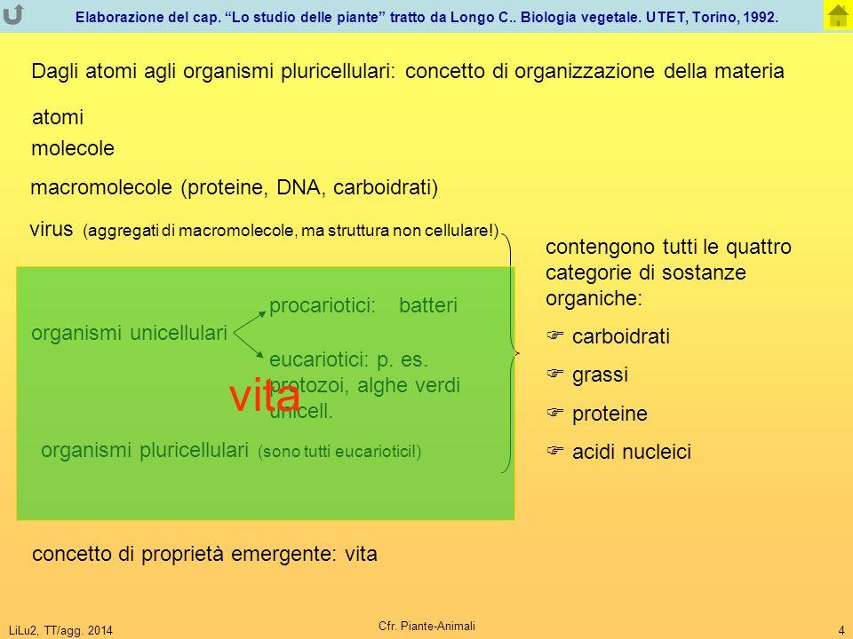 """LiLu2, TT/agg. 2014 Cfr. Piante-Animali 4 Elaborazione del cap. """"Lo studio delle piante"""" tratto da Longo C.. Biologia vegetale. UTET, Torino, 1992. vi"""