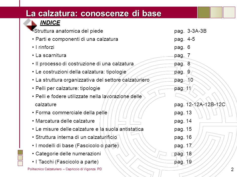 Politecnico Calzaturiero – Capriccio di Vigonza PD La calzatura: conoscenze di base 2 INDICE Struttura anatomica del piedepag. 3-3A-3B Parti e compone