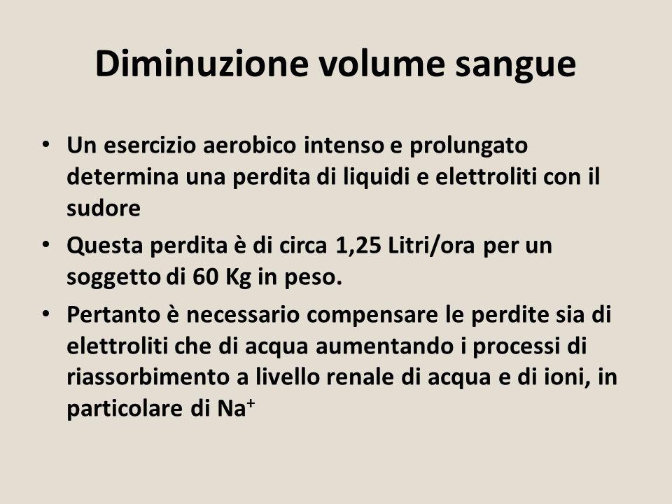 Un esercizio aerobico intenso e prolungato determina una perdita di liquidi e elettroliti con il sudore Questa perdita è di circa 1,25 Litri/ora per u