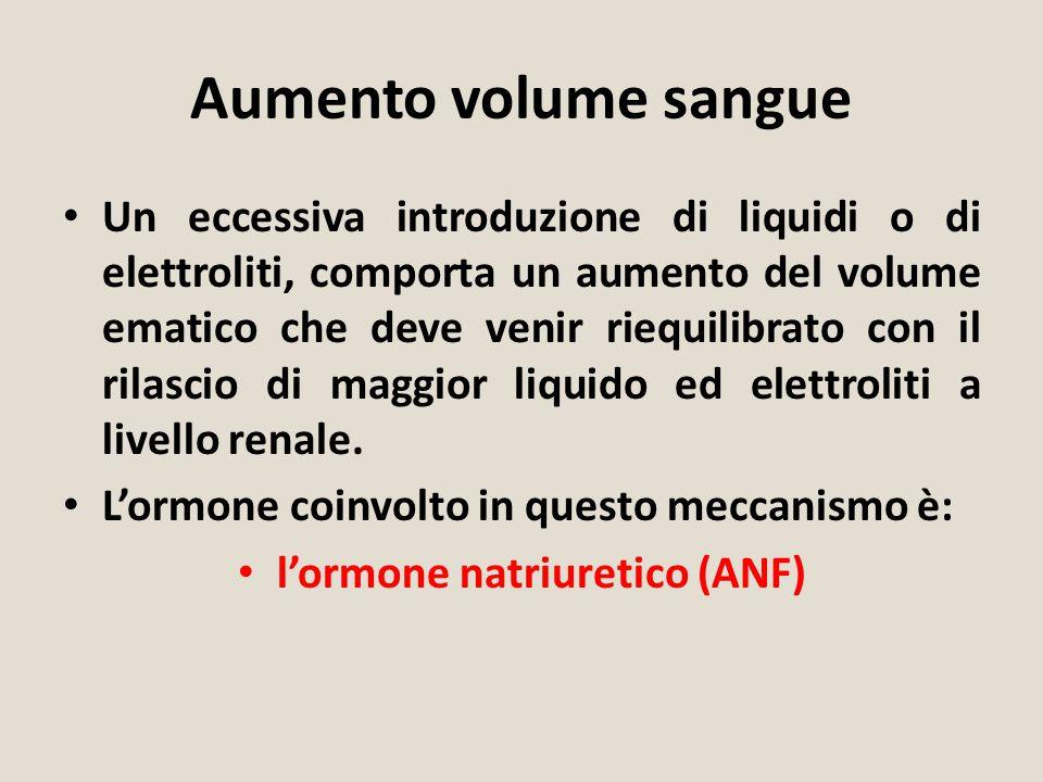 Aumento volume sangue Un eccessiva introduzione di liquidi o di elettroliti, comporta un aumento del volume ematico che deve venir riequilibrato con i