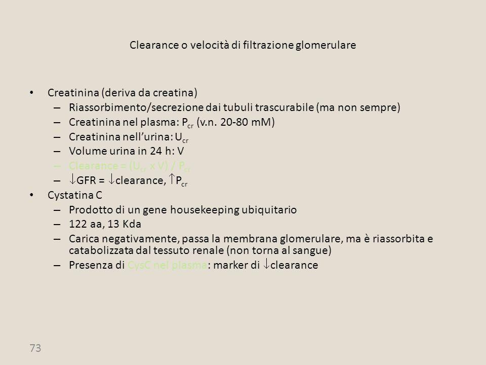 73 Clearance o velocità di filtrazione glomerulare Creatinina (deriva da creatina) – Riassorbimento/secrezione dai tubuli trascurabile (ma non sempre)