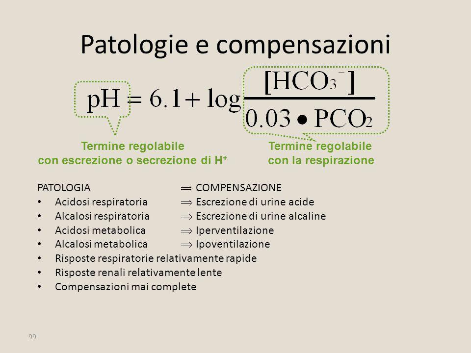 99 Patologie e compensazioni PATOLOGIA  COMPENSAZIONE Acidosi respiratoria  Escrezione di urine acide Alcalosi respiratoria  Escrezione di urine al