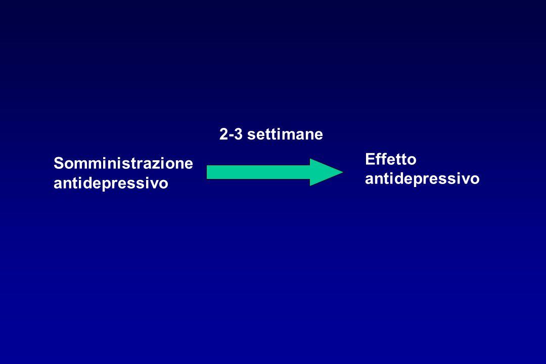 Somministrazione antidepressivo Effetto antidepressivo 2-3 settimane