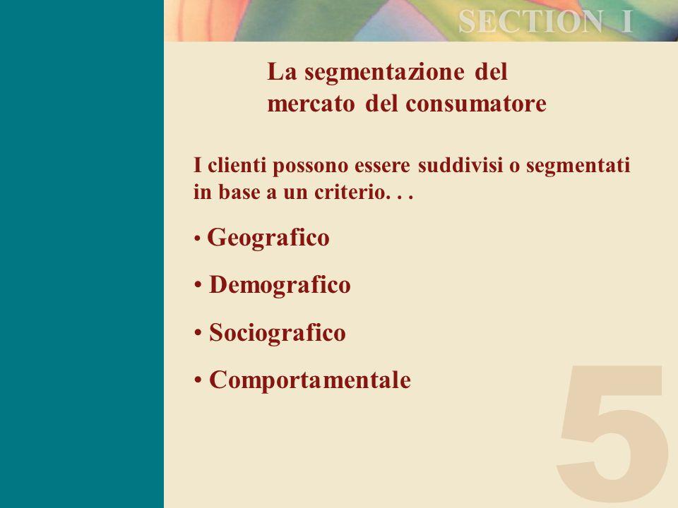 5 La segmentazione del mercato del consumatore I clienti possono essere suddivisi o segmentati in base a un criterio...