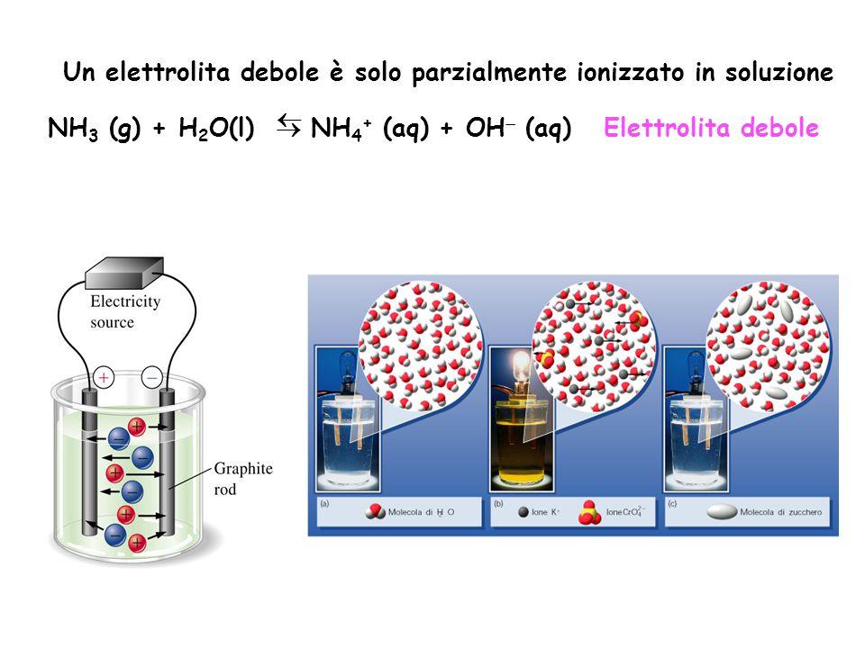 NH 3 (g) + H 2 O(l)  NH 4 + (aq) + OH  (aq) Elettrolita debole Un elettrolita debole è solo parzialmente ionizzato in soluzione 