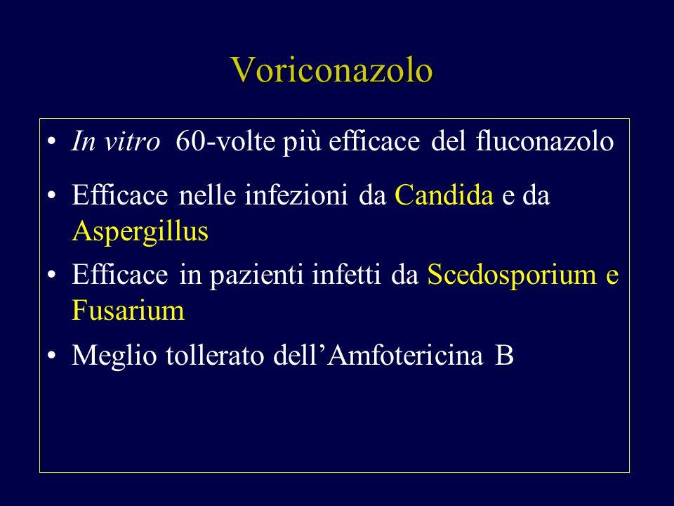 Voriconazolo In vitro 60-volte più efficace del fluconazolo Efficace nelle infezioni da Candida e da Aspergillus Efficace in pazienti infetti da Scedo