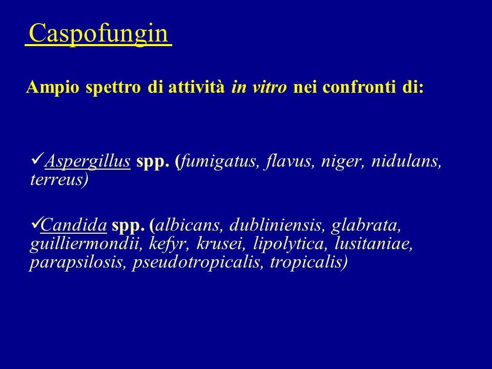 Caspofungin Ampio spettro di attività in vitro nei confronti di: Aspergillus spp. (fumigatus, flavus, niger, nidulans, terreus) Candida spp. (albicans
