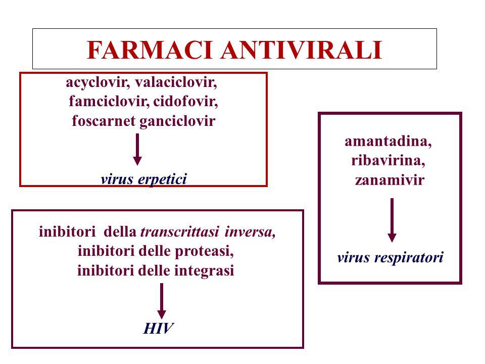 FARMACI ANTIVIRALI acyclovir, valaciclovir, famciclovir, cidofovir, foscarnet ganciclovir virus erpetici amantadina, ribavirina, zanamivir virus respi
