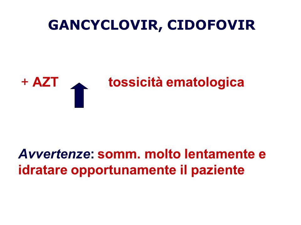 + AZTtossicità ematologica Avvertenze: somm. molto lentamente e idratare opportunamente il paziente GANCYCLOVIR, CIDOFOVIR