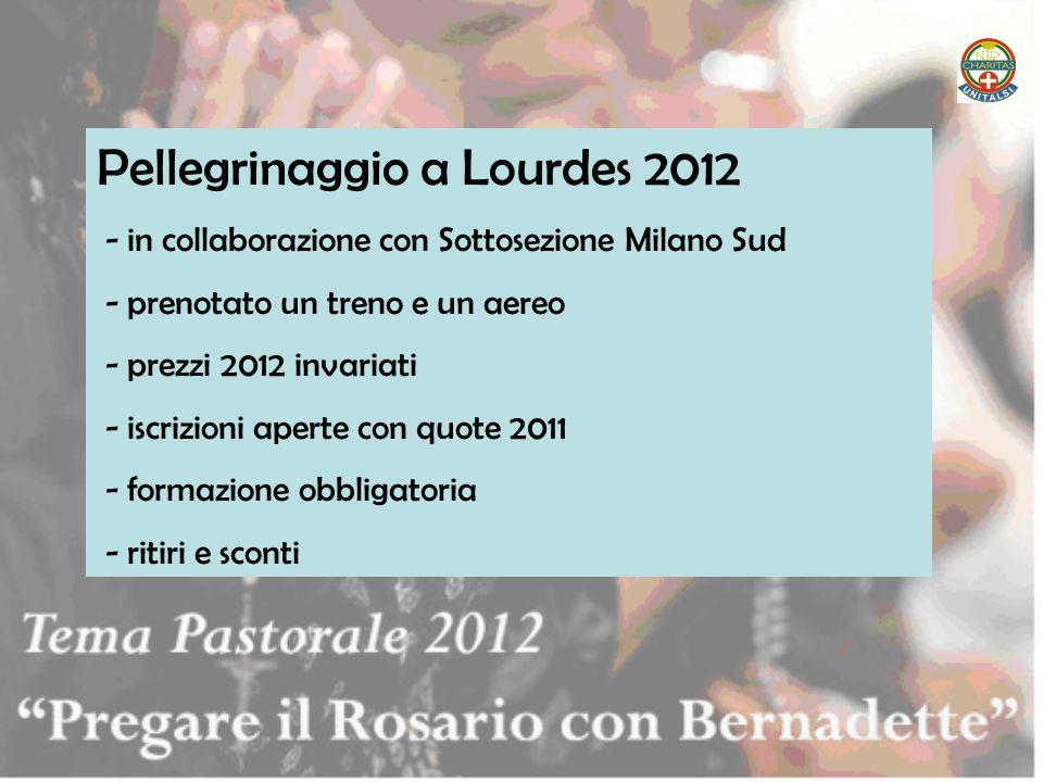 Pellegrinaggio a Lourdes 2012 - in collaborazione con Sottosezione Milano Sud - prenotato un treno e un aereo - prezzi 2012 invariati - iscrizioni ape