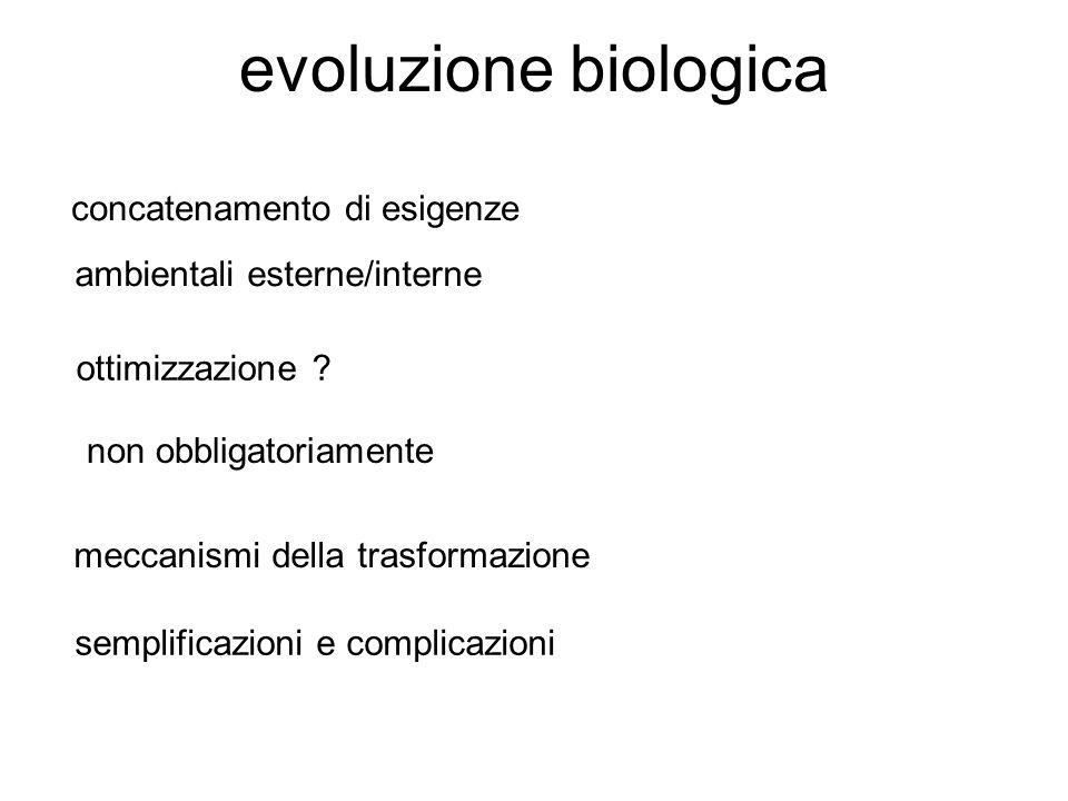 evoluzione biologica concatenamento di esigenze ambientali esterne/interne ottimizzazione .