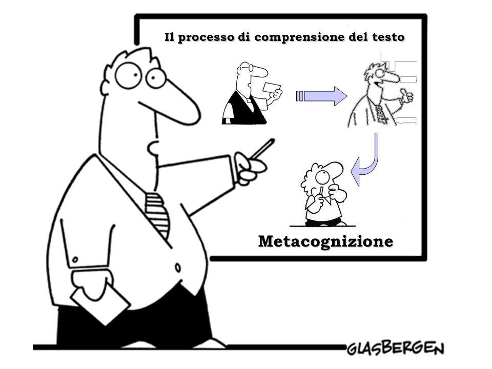 Metacognizione Il processo di comprensione del testo