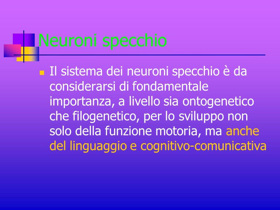 Neuroni specchio Il sistema dei neuroni specchio è da considerarsi di fondamentale importanza, a livello sia ontogenetico che filogenetico, per lo svi