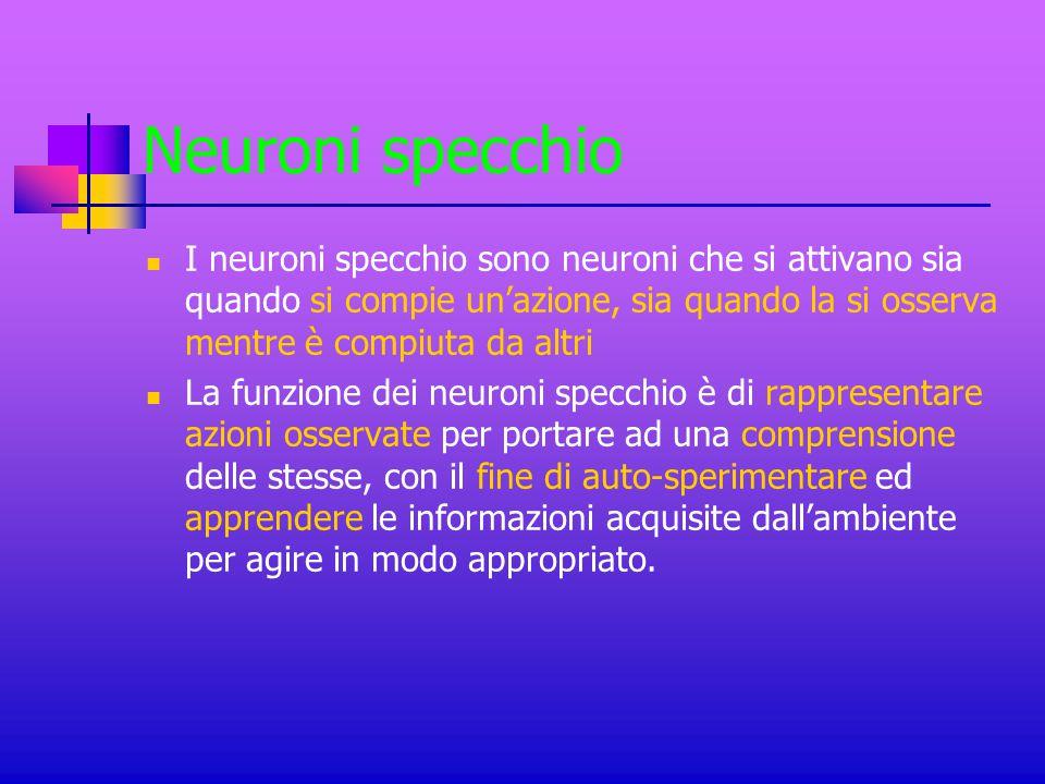 Neuroni specchio I neuroni specchio sono neuroni che si attivano sia quando si compie un'azione, sia quando la si osserva mentre è compiuta da altri L