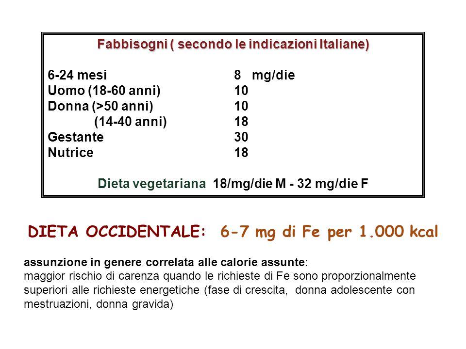 DIETA OCCIDENTALE: 6-7 mg di Fe per 1.000 kcal assunzione in genere correlata alle calorie assunte: maggior rischio di carenza quando le richieste di Fe sono proporzionalmente superiori alle richieste energetiche (fase di crescita, donna adolescente con mestruazioni, donna gravida) Fabbisogni ( secondo le indicazioni Italiane) 6-24 mesi8 mg/die Uomo (18-60 anni) 10 Donna (>50 anni) 10 (14-40 anni)18 Gestante30 Nutrice18 Dieta vegetariana 18/mg/die M - 32 mg/die F