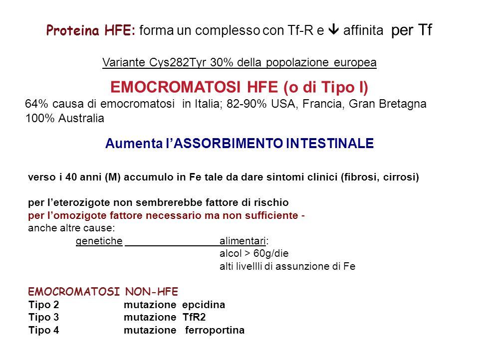 Proteina HFE : forma un complesso con Tf-R e  affinita per Tf Variante Cys282Tyr 30% della popolazione europea EMOCROMATOSI HFE (o di Tipo I) 64% causa di emocromatosi in Italia; 82-90% USA, Francia, Gran Bretagna 100% Australia Aumenta l'ASSORBIMENTO INTESTINALE verso i 40 anni (M) accumulo in Fe tale da dare sintomi clinici (fibrosi, cirrosi) per l'eterozigote non sembrerebbe fattore di rischio per l'omozigote fattore necessario ma non sufficiente - anche altre cause: genetiche alimentari: alcol > 60g/die alti livellli di assunzione di Fe EMOCROMATOSI NON-HFE Tipo 2 mutazione epcidina Tipo 3mutazione TfR2 Tipo 4 mutazione ferroportina