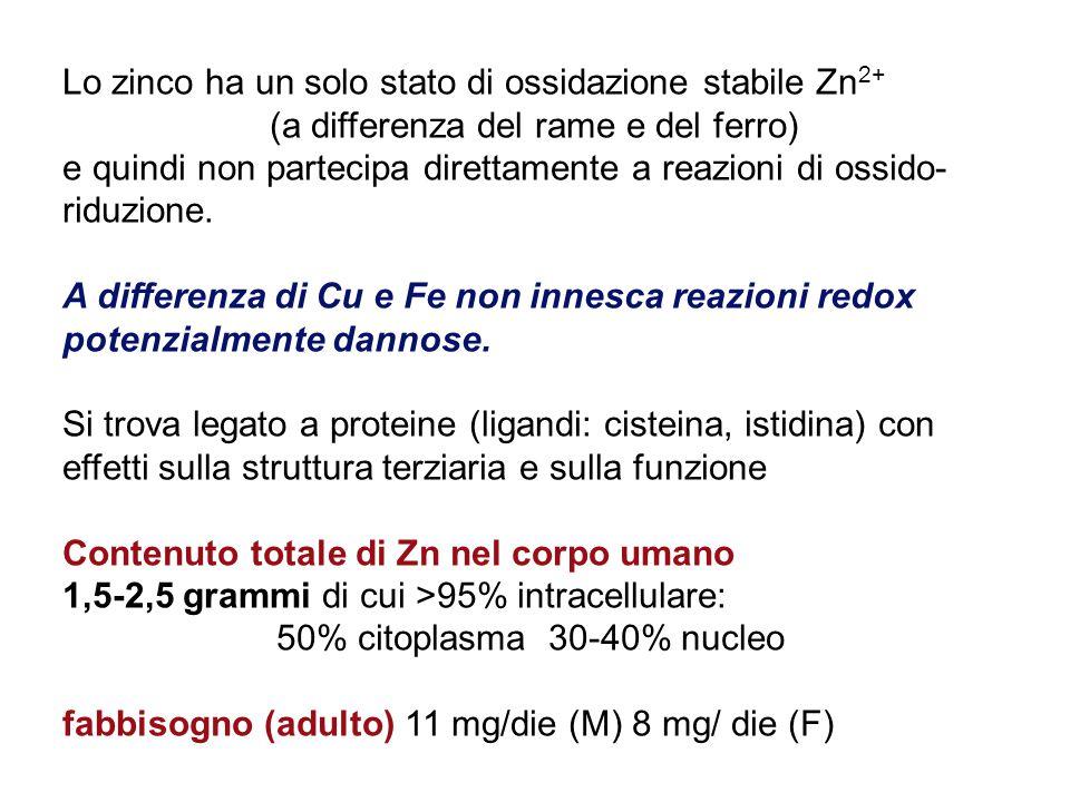Lo zinco ha un solo stato di ossidazione stabile Zn 2+ (a differenza del rame e del ferro) e quindi non partecipa direttamente a reazioni di ossido- riduzione.