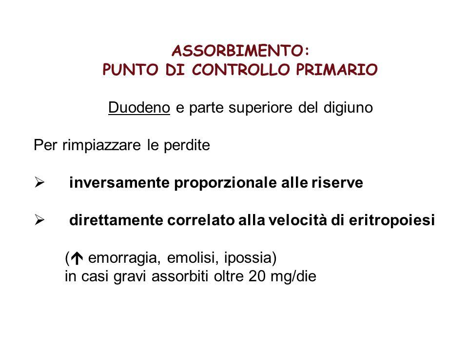 ASSORBIMENTO: PUNTO DI CONTROLLO PRIMARIO Duodeno e parte superiore del digiuno Per rimpiazzare le perdite  inversamente proporzionale alle riserve 
