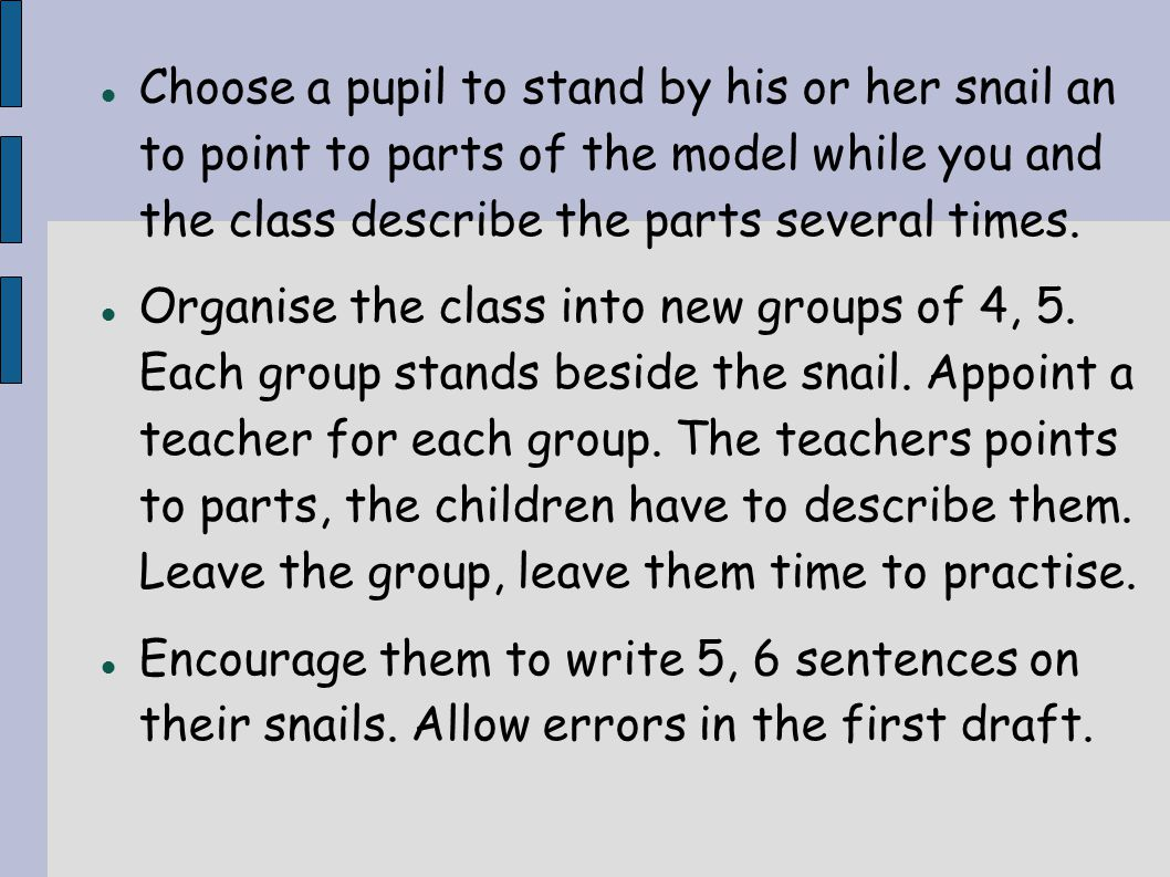 Choose a pupil to stand by his or her snail an to point to parts of the model while you and the class describe the parts several times. Organise the c