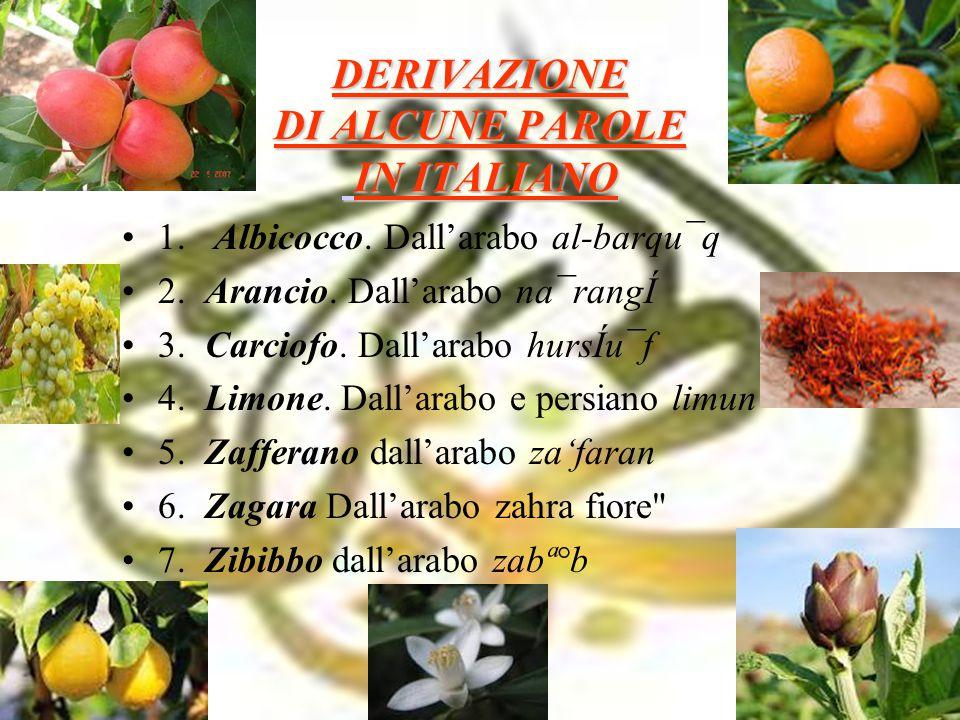 DERIVAZIONE DI ALCUNE PAROLE IN ITALIANO 1. Albicocco. Dall'arabo al-barqu¯q 2. Arancio. Dall'arabo na¯rangÍ 3. Carciofo. Dall'arabo hursÍu¯f 4. Limon