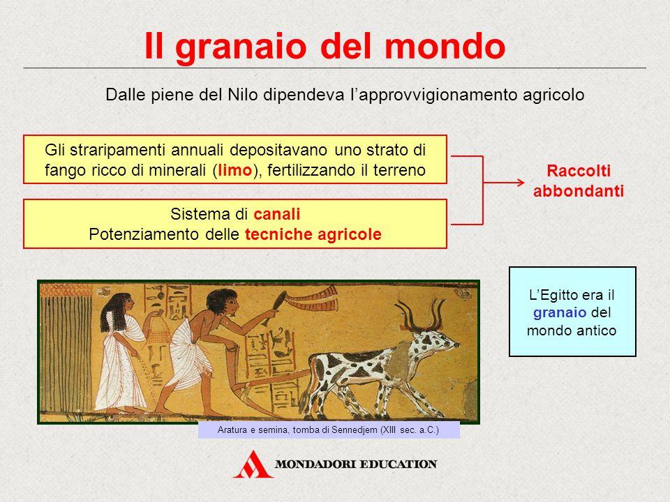 Il granaio del mondo Dalle piene del Nilo dipendeva l'approvvigionamento agricolo Aratura e semina, tomba di Sennedjem (XIII sec. a.C.) Gli straripame