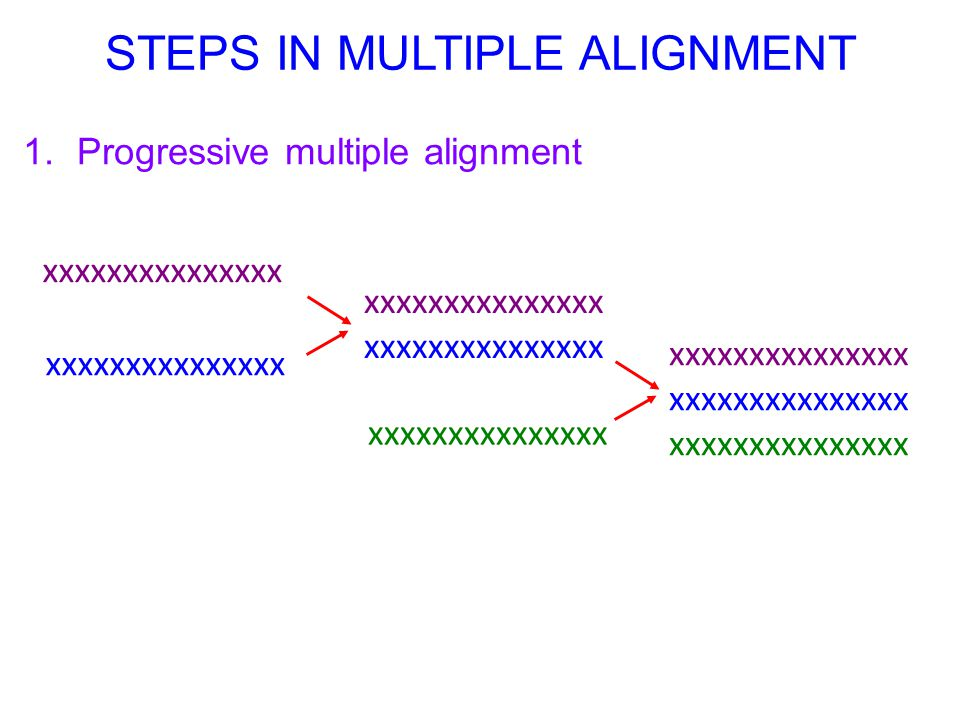 1.Progressive multiple alignment STEPS IN MULTIPLE ALIGNMENT xxxxxxxxxxxxxxx