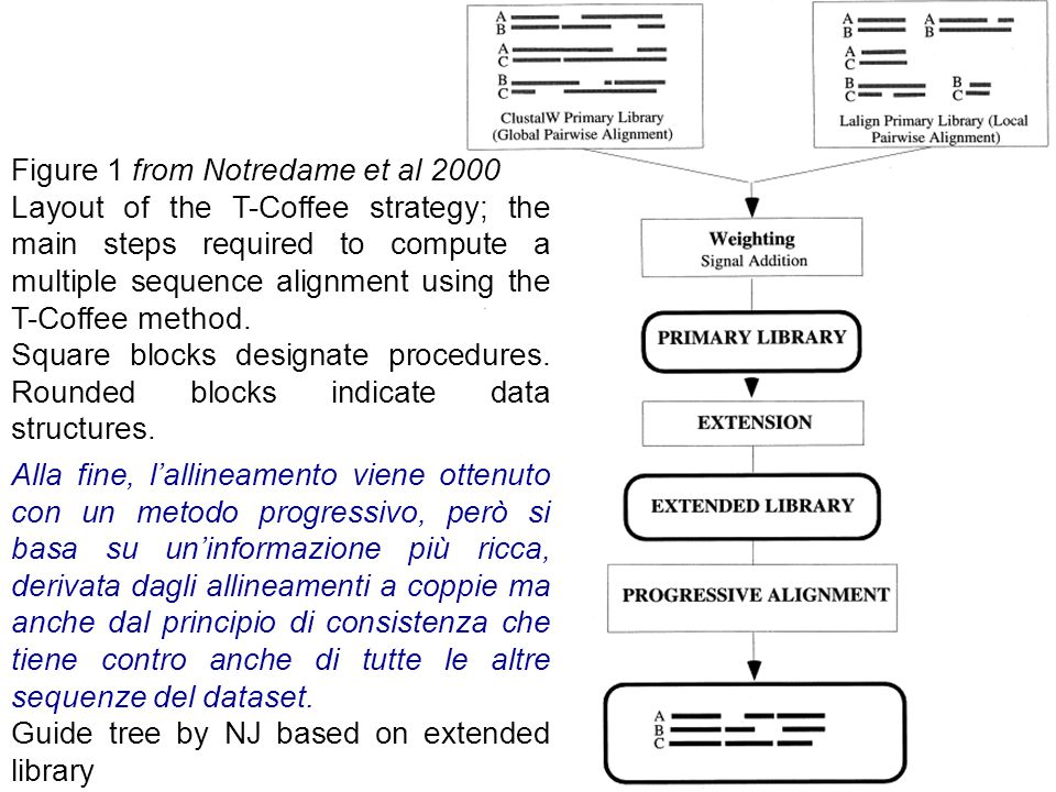 Figure 1 from Notredame et al 2000 Layout of the T-Coffee strategy; the main steps required to compute a multiple sequence alignment using the T-Coffe
