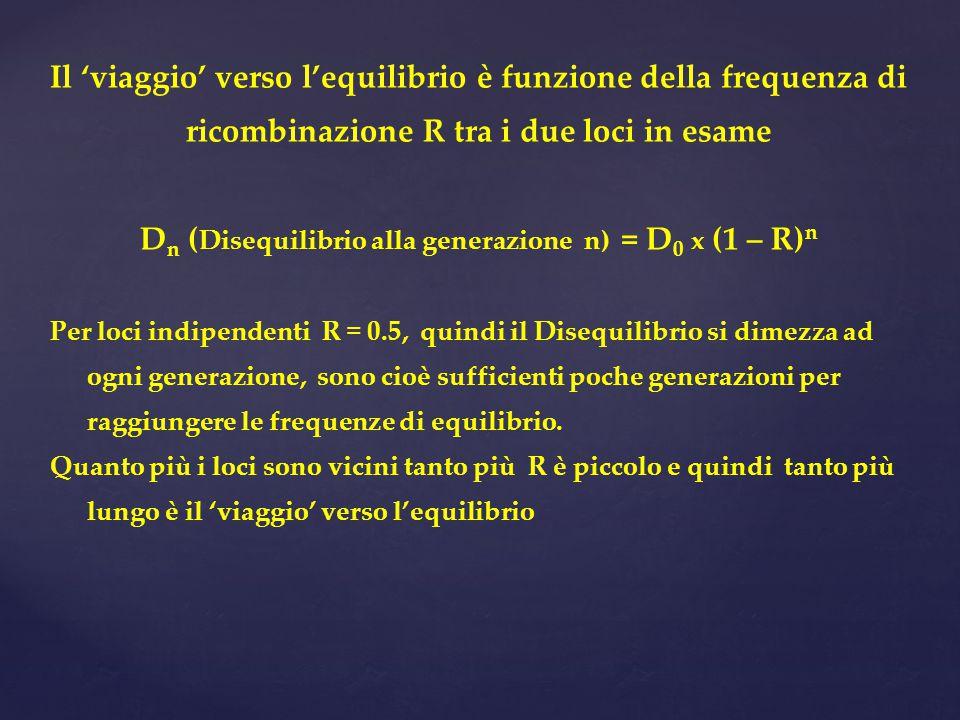 Il 'viaggio' verso l'equilibrio è funzione della frequenza di ricombinazione R tra i due loci in esame D n ( Disequilibrio alla generazione n) = D 0 x