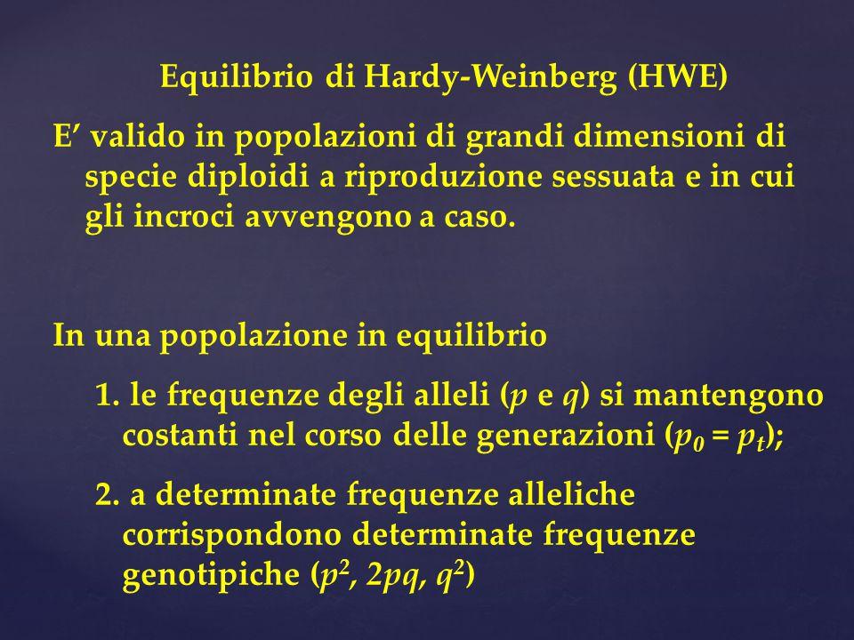 Equilibrio di Hardy-Weinberg (HWE) E' valido in popolazioni di grandi dimensioni di specie diploidi a riproduzione sessuata e in cui gli incroci avvengono a caso.