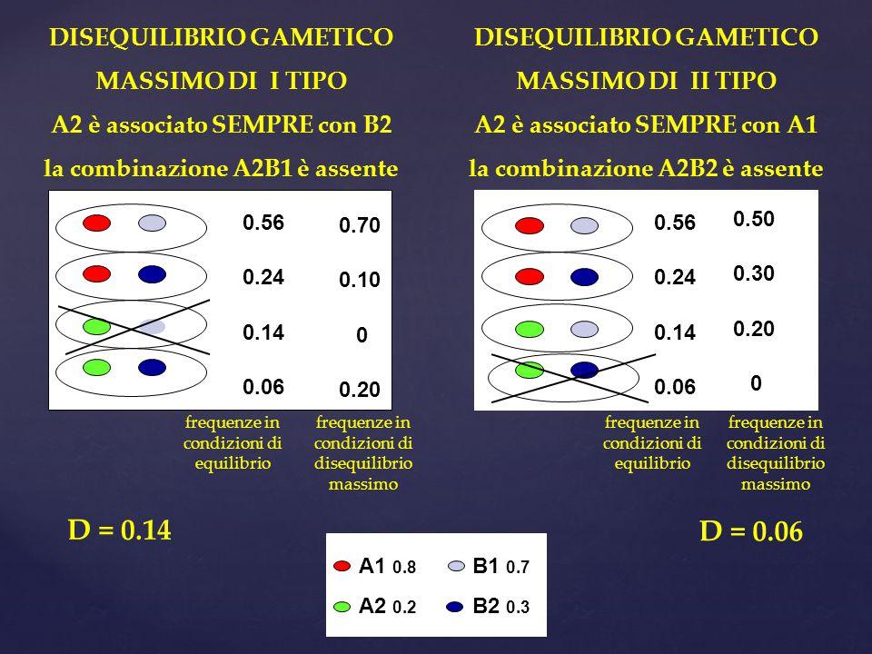 DISEQUILIBRIO GAMETICO MASSIMO DI I TIPO A2 è associato SEMPRE con B2 la combinazione A2B1 è assente DISEQUILIBRIO GAMETICO MASSIMO DI II TIPO A2 è associato SEMPRE con A1 la combinazione A2B2 è assente 0.56 0.24 0.14 0.06 A1 0.8 A2 0.2 B1 0.7 B2 0.3 0.70 0.10 0 0.20 0.50 0.30 0.20 0 0.56 0.24 0.14 0.06 D = 0.14 D = 0.06 frequenze in condizioni di equilibrio frequenze in condizioni di disequilibrio massimo frequenze in condizioni di equilibrio frequenze in condizioni di disequilibrio massimo