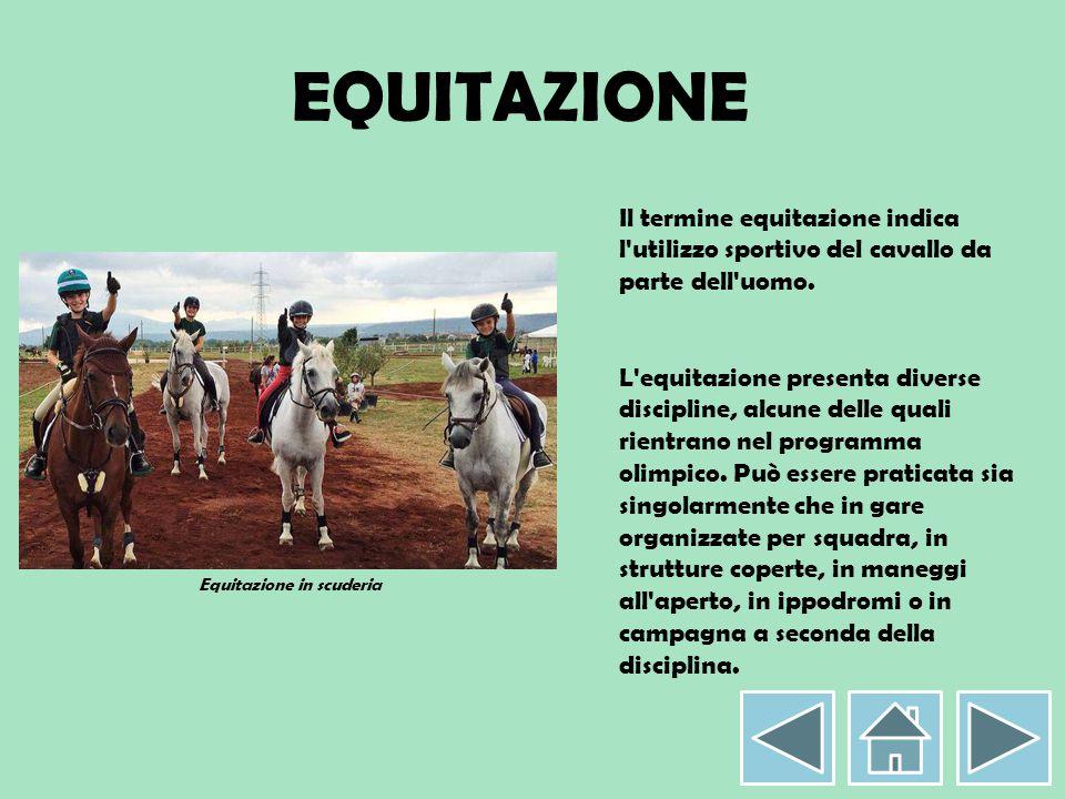 EQUITAZIONE Il termine equitazione indica l'utilizzo sportivo del cavallo da parte dell'uomo. L'equitazione presenta diverse discipline, alcune delle
