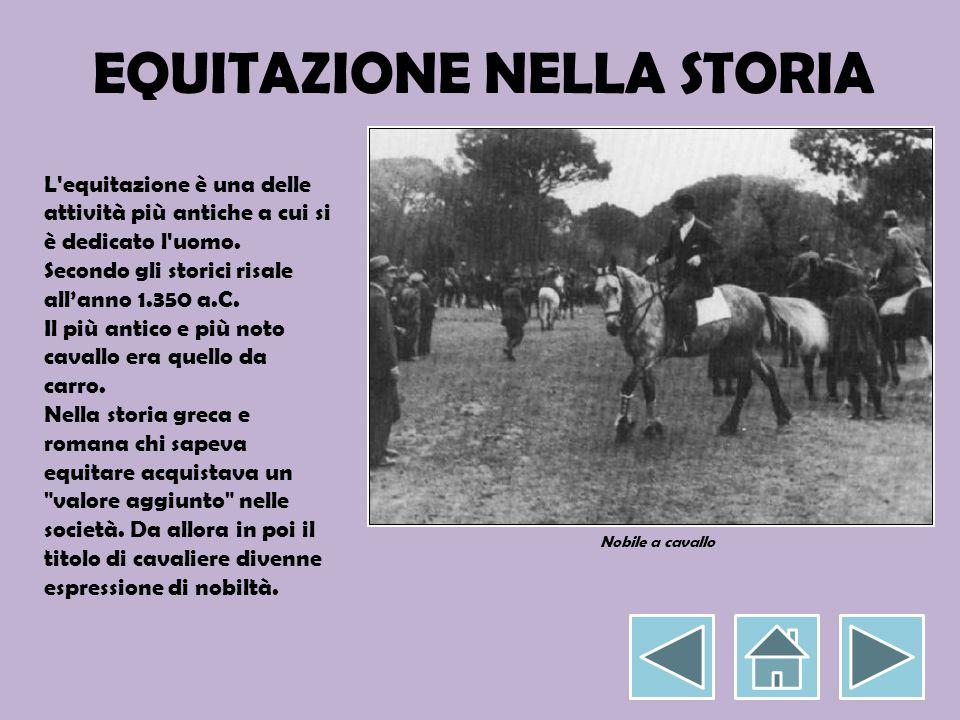 EQUITAZIONE NELLA STORIA L'equitazione è una delle attività più antiche a cui si è dedicato l'uomo. Secondo gli storici risale all'anno 1.350 a.C. Il