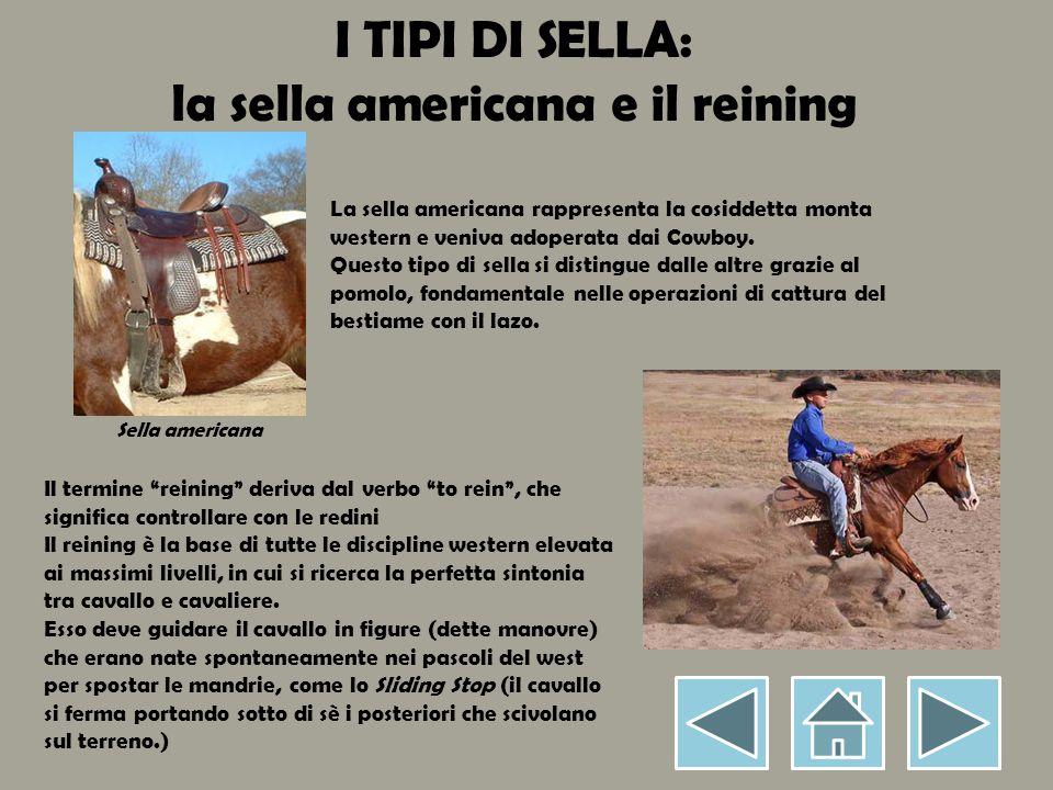 I TIPI DI SELLA: la sella americana e il reining La sella americana rappresenta la cosiddetta monta western e veniva adoperata dai Cowboy.